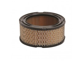 Air Filter Briggs & Stratton / 392286