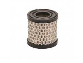 Air Filter Briggs & Stratton / 392308