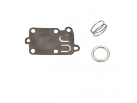Diaphragm Kit - B&s / 5021