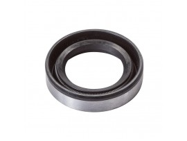 Oil Seal Briggs & Stratton / 391086, 4117