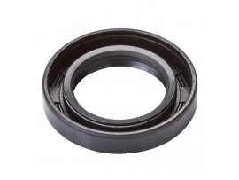 Oil Seal Briggs & Stratton / 399781