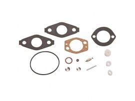 Kit Carburetor Briggs 695157 / 695157